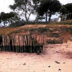 Petit Rohu. La dune recule
