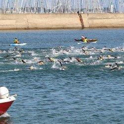 800 nageurs attendus aux 4e Défis Quiberonnais