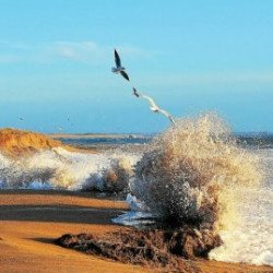 Grand site dunaire Gâvres-Quiberon. 20 ans d'écueils contournés