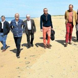 Réouvertures des plages : attention au gravelot
