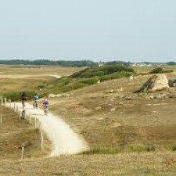 AQTA à l'écoute des Cyclistes et des Cyclotouristes