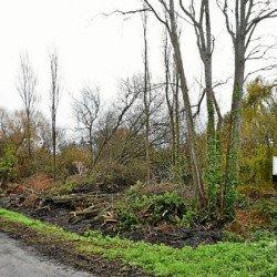 Des travaux pour préserver la zone humide du Lizeau à Saint-Pierre-Quiberon